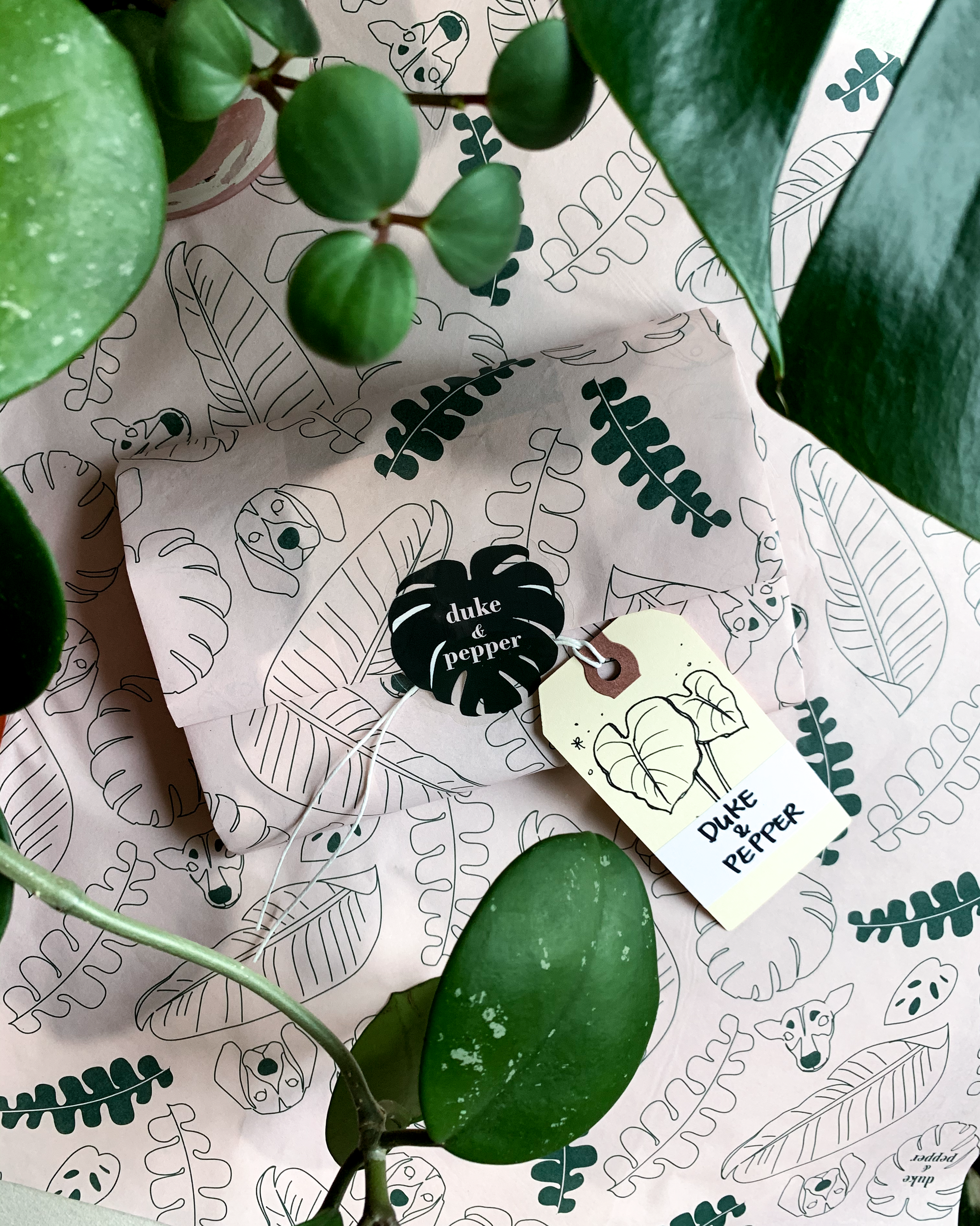 Duke & Pepper: Plants in Art Form