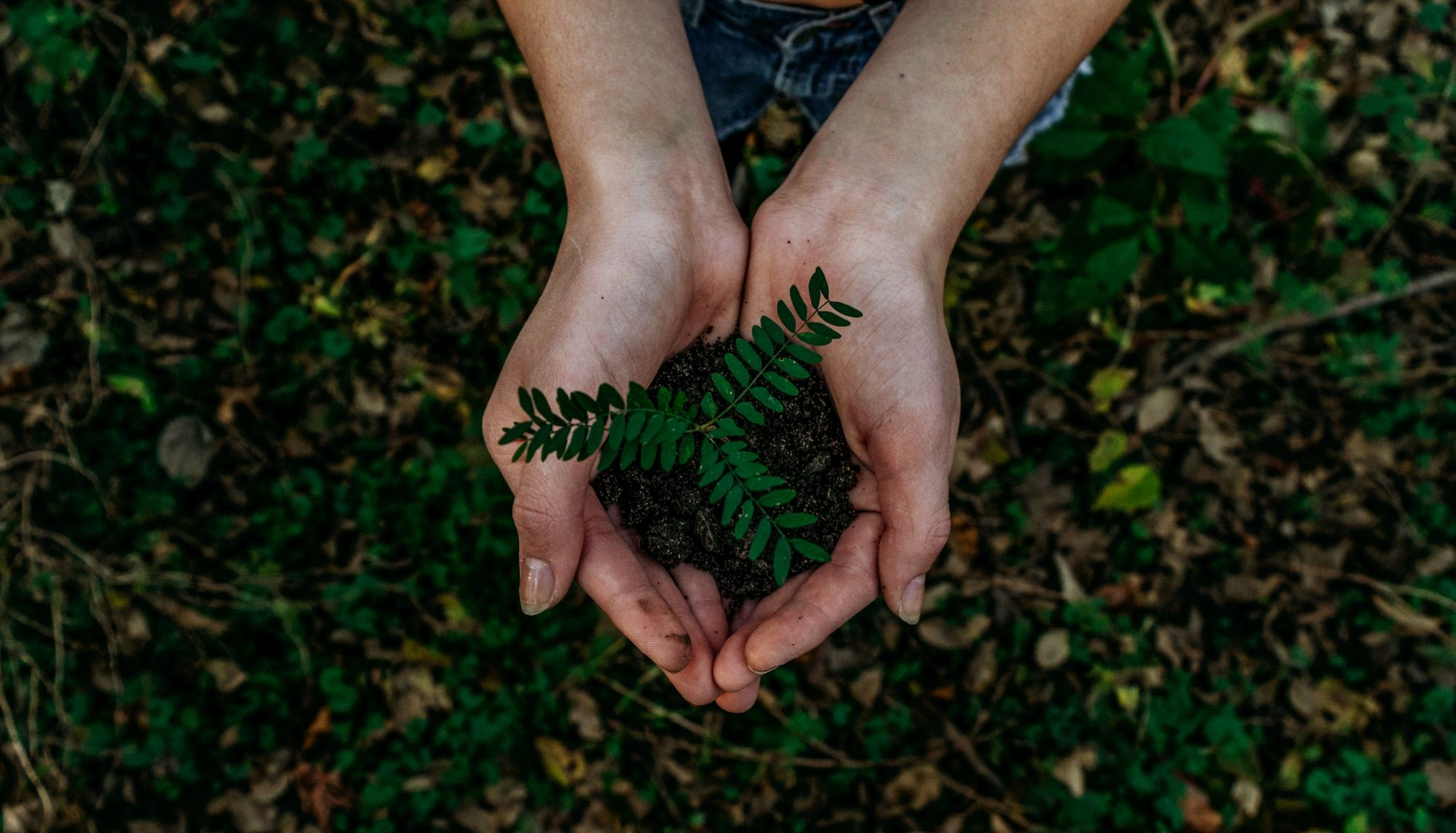 Tips on how to run your business more sustainably in a post-pandemic world