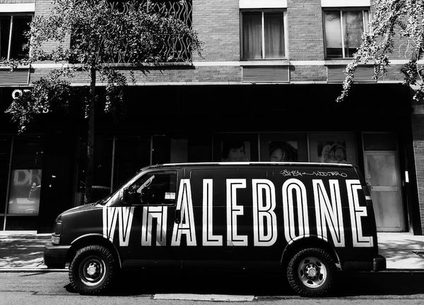 Telling the truth, but making it fun, with Whalebone Magazine